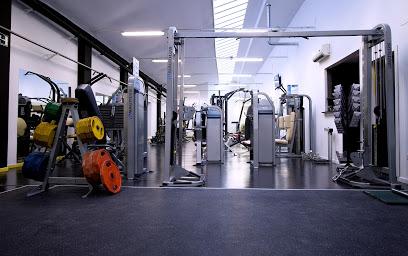 One Fitness Gym