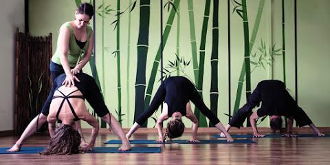Makaranda Yoga