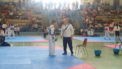 Taekwondo Baza (Granada)