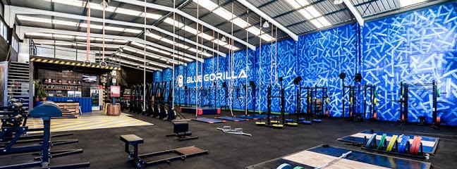 CrossFit BlueGorilla