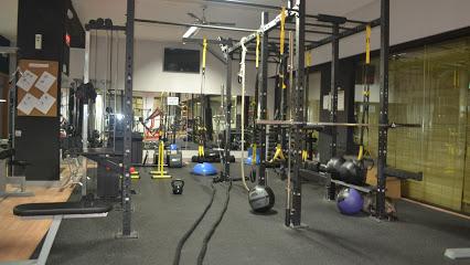 Lizard Gym