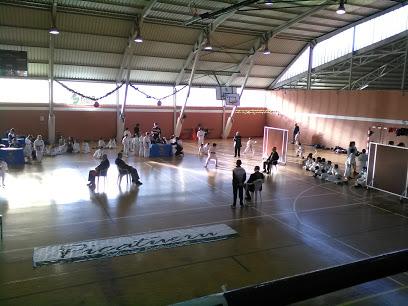 Municipal Sports Castrillón
