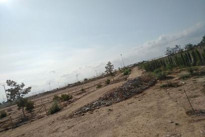 Circuito Pinatar