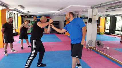 Gimnasio Defense Fight School  Castro Urdiales