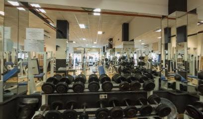 Gym Evolution Center
