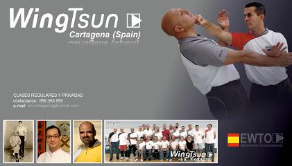AVCI Wing Tsun Cartagena WTEO ( Wing Tsun Escrima Organozation)