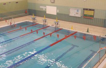 piscina polideportivo bidebieta